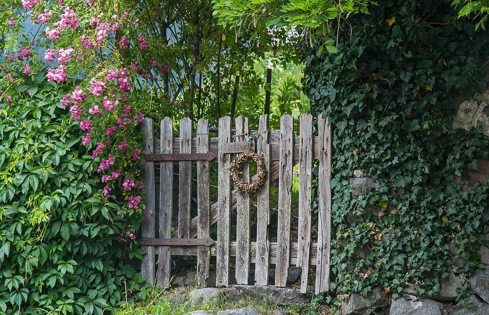 tuin-met-schutting