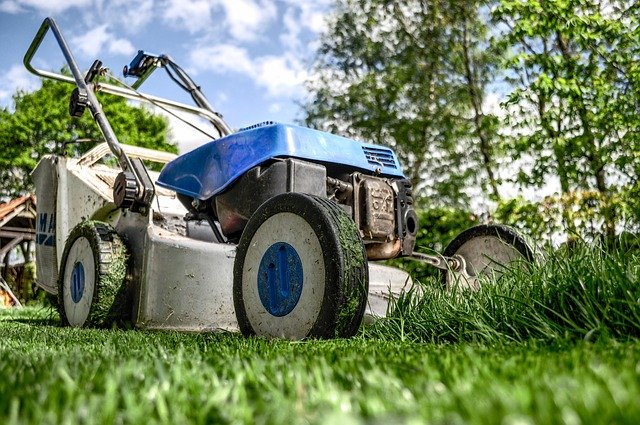 Het belang van onderhoud in de schoonheid van de tuin